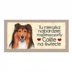 "Magnes z Twoim Pupilem ""Collie"""