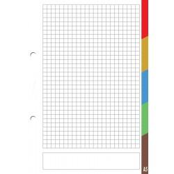 Wkład do segregatora z kolorowymi registrami A-5